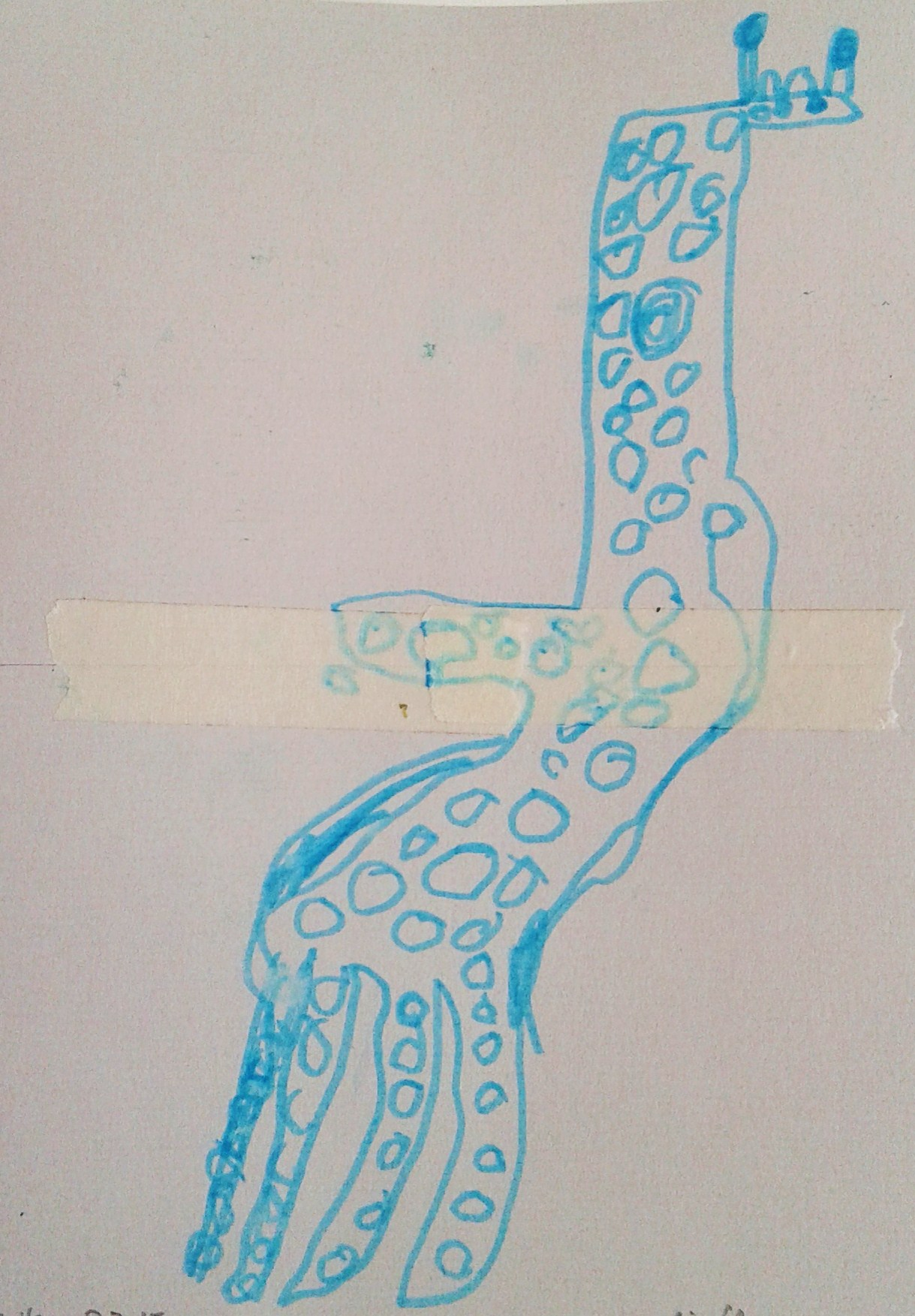 giraffe n