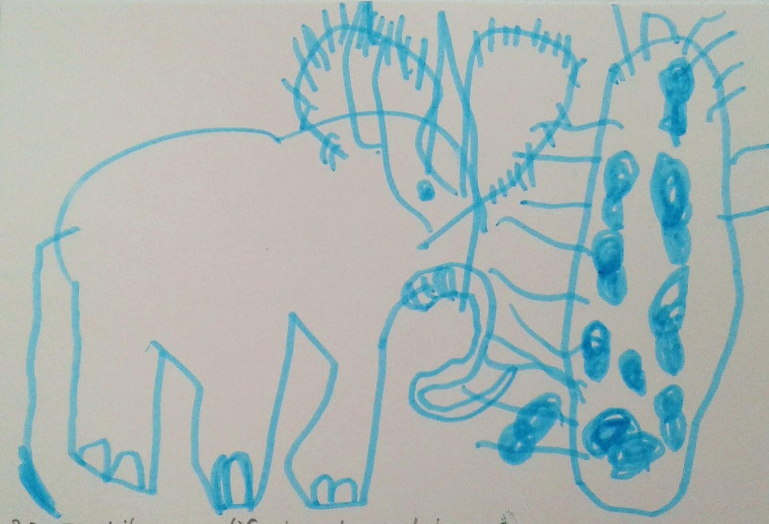 olifant n pinda